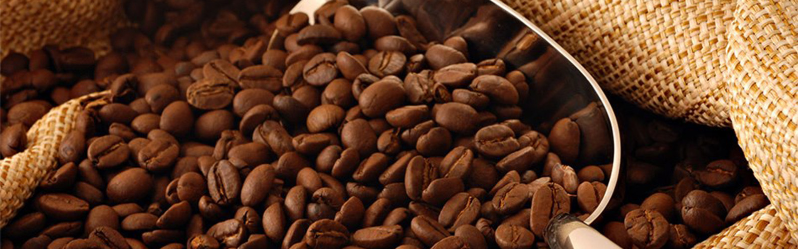 squirescoffeeslider-coffee-beans